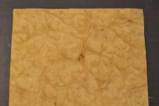 Myrtle Burl Raw Wood Veneer Sheet 9 X 85 Inches 150th 8707 40