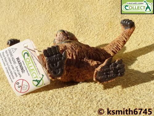 CollectA ORANGUTAN solid plastic toy wild zoo Jungle animal monkey ape NEW