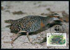 COCOS ISLANDS MK VÖGEL BIRDS BINDENRALLE MAXIMUMKARTE MAXIMUM CARD MC CM bh12