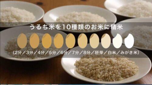 YAMAMOTO MB-RC52W Household Rice Mill Machine Takumi Mai WHT Fast Ship Japan EMS