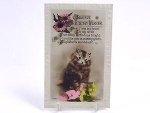 Antique-real-photograph-postcard-Birthday-Card-cute-cat-kitten-flowers