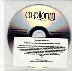 (EH127) Co-Pilgrim, A Fairer Sea - 2012 DJ CD