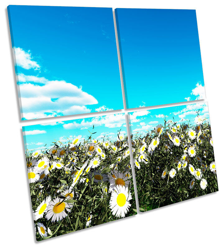 Floral Daisy Field Meadow MULTI CANVAS WALL ART Square Picture