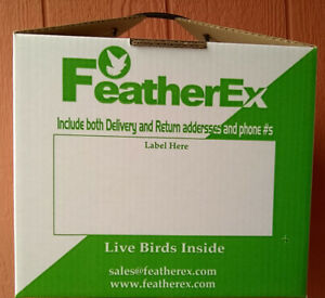 One 12 x 12 FeatherEx Box : Live Bird Shipping Boxes