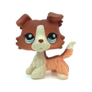 Hasbro Littlest Pet Shop LPS 1542 Rare Brown White Collie Puppy Dog Blue Eyes