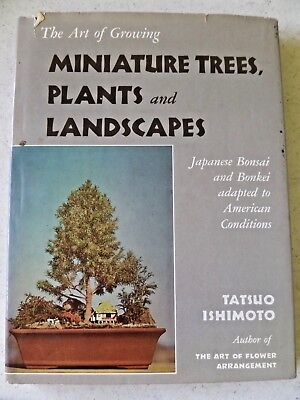 The Art Of Growing Miniature Trees Plants And Landscapes By