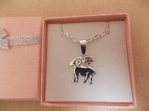 Tierkreis Sternzeichen Halskette Silber Überzogen mit Strass Verzierung