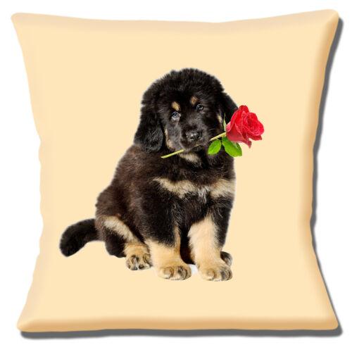 "CUTE GERMAN SHEPHERD PUPPY LONG HAIR RED ROSE CREAM 16/"" Pillow Cushion Cover"