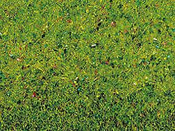 Encore-00270-GRASMATTE-Fleurs-Prairie-120-x-60-cm