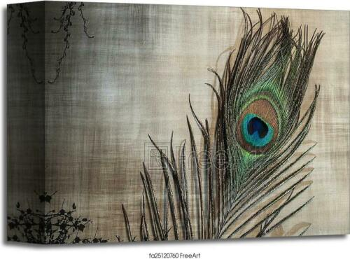 C Wall Art Home Decor Poster Peacock Feather On Textured Art//Canvas Print
