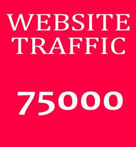 75-000-Webseite-Besucher-Echte-Besucher-Traffic-SEO-Webprojekt-Ranking-PR