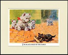 WESTIE TERRIER MUM PUPS NAUGHTY SCOTTISH TERRIER PUP DOG PRINT READY TO FRAME