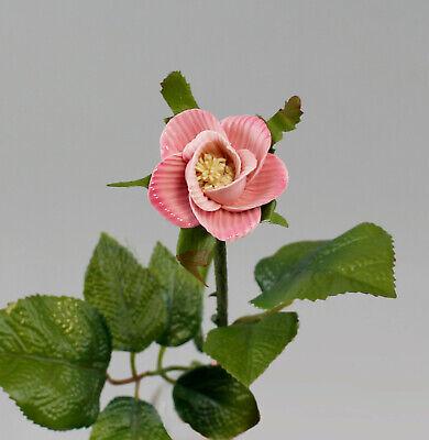 Sinnvoll 9944365 Porzellan Stiel-rose Rosenblüte Kämmer Rosa Geriffelt L48cm D6cm