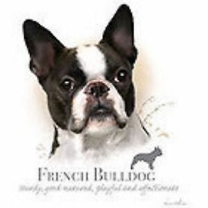 French Bulldog ROBINSON Pick Your Size T Shirt Youth Small-6 X Large