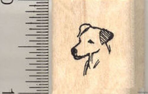 pets Jack Russell dogs Tiny Parson/'s terrier head Rubber Stamp A10519 WM dog