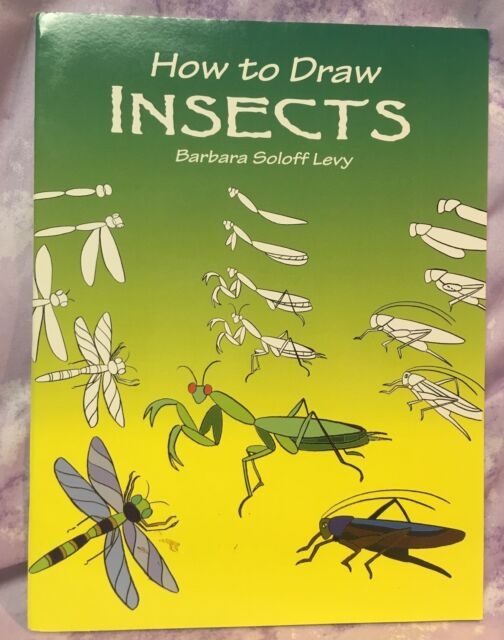 How to Draw Insects Instructional booklet Barbara Soloff Levy
