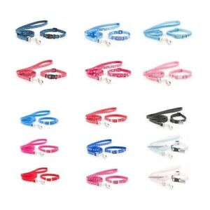 Dog-Collar-and-Lead-Small-Ancol-Bite-Puppy-Sets-Raspberry-Blue-Pink-Red-Black