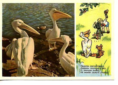 1955 Two Boys Vintage Soviet Postcard Child Art Print Alexandrova Illustrator T Little Anglers Card