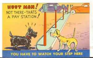 Undated-Unused-Postcard-Comic-Dogs-with-a-bunch-of-parking-meters-choosing