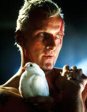 Rutger Hauer UNSIGNED photo - B1118 - Blade Runner