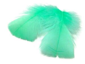 GREY Turkey T-Base Plumage Feathers 0.50 oz. 1 Pack