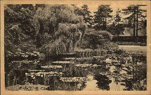 Kingston-on-Thames-London-AK-1926-Royal-Botanic-Gardens-Botanischer-Garten-Pond