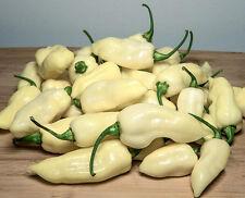 FATALII WHITE pure seeds