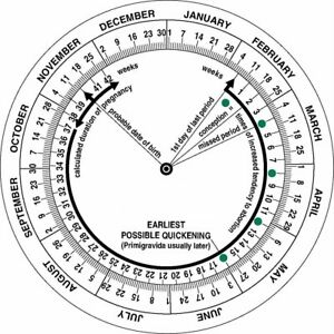 Details about Pregnancy Due Date Calculator Obstetric Wheel, Nurses,  Midwifery - Timesco