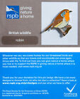 RSPB Pin Badge | Robin | GNaH backing card [00492]