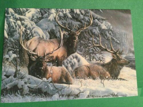 Inventory #1262 Leanin/' Tree Christmas Card Elk in Snow