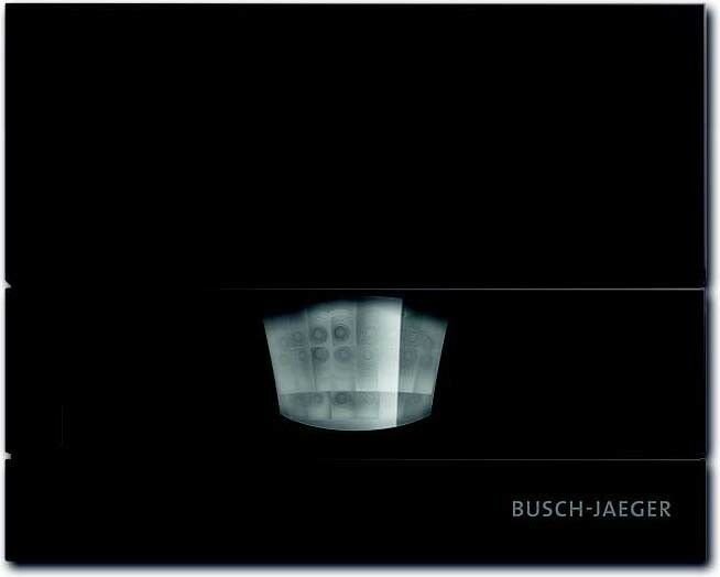 Busch-Jaeger Wächter br 6855 AGM-201 (1er)