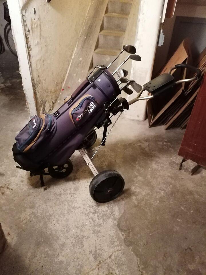 Dame golfsæt, stål, Acer