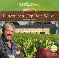 Futterrüben 'typ Rote Walze' - Beta Vulgaris Rapacea Runkelrüben 29908412