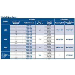 "AUTOMATIC VALVE A7106-606W 1/4""BSPP MANIFOLD MFGD"
