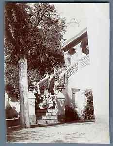 Algerie-Dames-posant-sur-un-escalier-Vintage-citrate-print-Vintage-Algeria