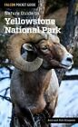 Nature Guide to Yellowstone National Park by Ann Simpson, Rob Simpson (Paperback, 2015)
