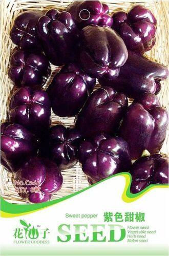 Original Package 8 Sweet Pepper Seeds Capsicum Annuum Purple Sweet Pepper C062