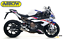 FULL-EXHAUST-SYSTEM-ARROW-COMPETITION-FULL-TITANIUM-BMW-S-1000-RR-S1000RR-2019 thumbnail 1