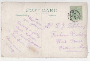 Cheddar-D-10-Jul-1909-Single-Ring-Postmark-Somerset-861b