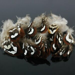 Lots-Wholesale-100pcs-Beautiful-Natural-Pheasant-Feathers-2-3-inches