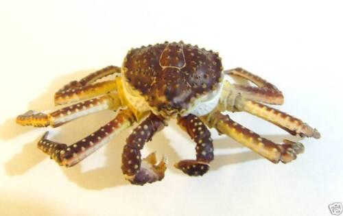 RARE Yujin Takara Kaiyodo Alaska King Crab Figure