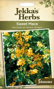 Details about Johnsons - Herb - Jekka's Herbs - Sweet Mace (Mexican  Tarragon) - 100 Seeds