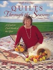 Quilts Through the Seasons: A Quilt for Each Month of the Year Quilt in a Day