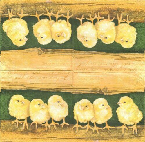 2 Serviettes en papier Poussins Decoupage Paper Napkins Chicks