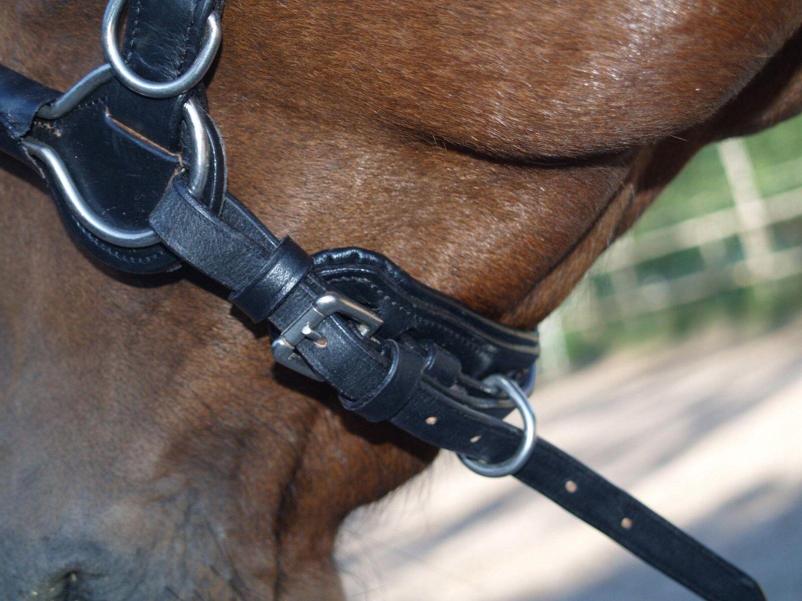 Kappzaum Leder ergonomisch  Mini Shetty S P VB Zaum WB Leder Gebisseinhänger Zaum VB e49ac1