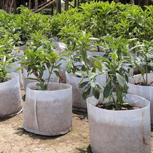 Neu Rund Stoff Blumentöpfe Pflanze Beutel Wurzel Behälter Pflanzbeutel Belüftung