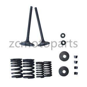 Details about Intake Exhaust Valves Kit Set Zongshen CG250 250cc Water  Cooled ATV Dirt Bike