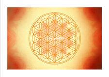 Energie Bild - Die Blume des Lebens - Höheres Selbst - Meditationsbild