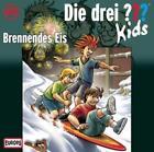 Die drei ??? Kids (40) Brennendes Eis von Ulf Blanck (2014)