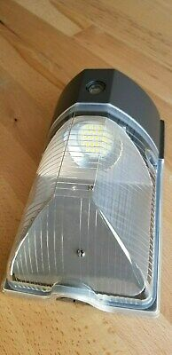 Bronze 2600 Lumens 5000K LED Outdoor Wall Light Fixture